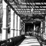 """Trieste Trellace"" by DonnaCorless"