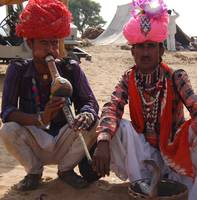 snake charmer pushkar fair