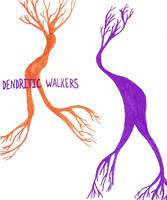 dendritic walkers