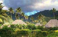 Moorea After The Rain