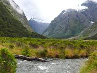 Mountain Stream, Milford Sound, NZ