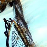"""""""Gateway"""" by ashleyarmitage"""