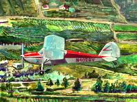 1948 Cessna 170 over the Orchards