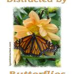 """Distracted by Butterflies 04178"" by quotes"