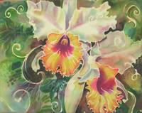 Orchid Series 9