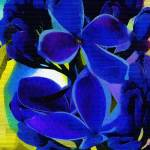 """Sensation Lilac Fauvist Art"" by hotart"