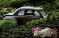 Rusty Car in flower Bed