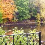 """Concord River Rogers Street at Jollene Dubner Park"" by VPHolmesArt"
