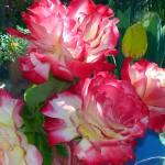 """""""Red Rose Vase"""" by LorrieMorrison"""