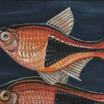 """Harlequin Rasbora"" by juliesillustration"