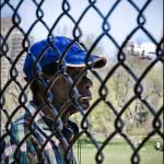 """Baseball, Central Park"" by megangoodwin"