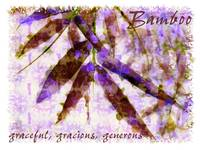 bamboo graceful generous card