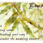 """bamboo amazing card"" by karenerdmann"