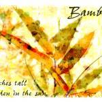 """bamboo reaches tall yellow"" by karenerdmann"