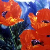 Poppies Art Prints & Posters by Diane Berni