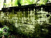 Ruined wall at Fort Custer