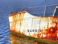 Wreck of the Sarsia