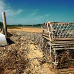 """Cape Cod Orleans Lobster Trap Nauset Heights"" by dapixara"