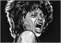 Tina Turner LARGE