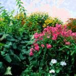 """Impressionist Garden"" by marinebluesoul"