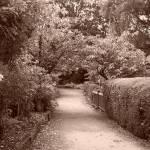 """Ambleside, Cumbria"" by rachelwitty"