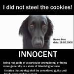 """""""innocent"""" by lekym"""