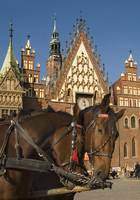 Poland Wroclaw Town Hall