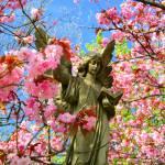"""Spring Angel # 2"" by Northern_Night_Sky"