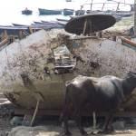 """Bulluck Boat"" by cratierbreastman"