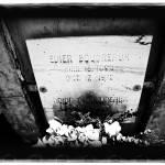"""Old Biloxi Cemetery Boudreaux"" by AtomicCerebellum"