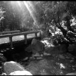 """Bridge to Salvation"" by csmith"