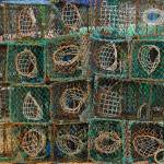"""Lobster Traps Six By Four"" by KolinP"