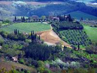 View from San Gimignano 1
