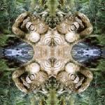 """Bali mandala - forest"" by belinda"