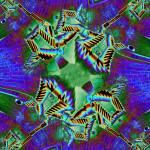 """Drainpipe Garden Fractal 2"" by TimAllen"