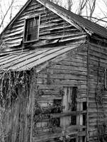 Old shed side 2 B&W
