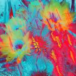 """Firecactus"" by barbarabackyard"