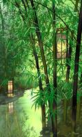 Bamboo and Lanterns