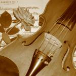 """""""Violin rose"""" by kense"""