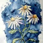 """3 daisies painting"" by derekmccrea"