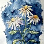 """3 daisies painting"" by derekmccrea"