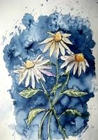 3 daisies painting