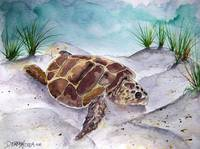 sea turtle painting 2