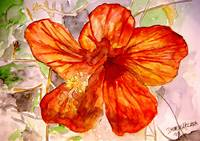 hibiscus 2 tropical flower painting