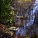 """Riverside"" by MicheleShields"