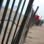 """beach fence"" by dayna7"