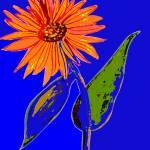 """""""Flower 2"""" by kostliva"""