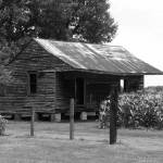 """""""Again Another Rustic Southern BW"""" by NaturePlusStudios"""