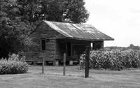 Again Another Rustic Southern BW
