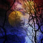 """""""Lunar Facade"""" by katbesthorn"""